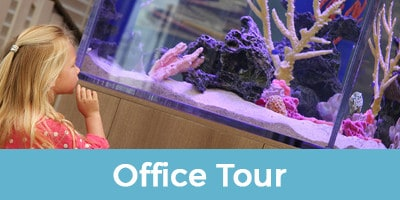 office-tour