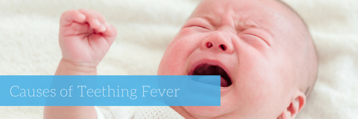 A number of things are said to cause low-grade fever during the teething  period. One among them is the inflammation of the gum during the eruption  of the ...