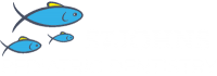 St. Johns Pediatric Dentistry